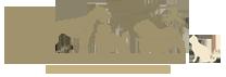 logo-d.png